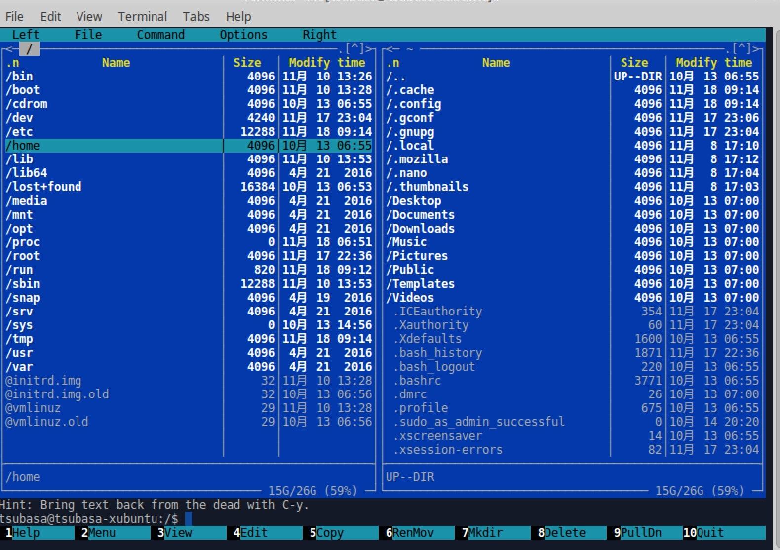 Xterm linux ubuntu