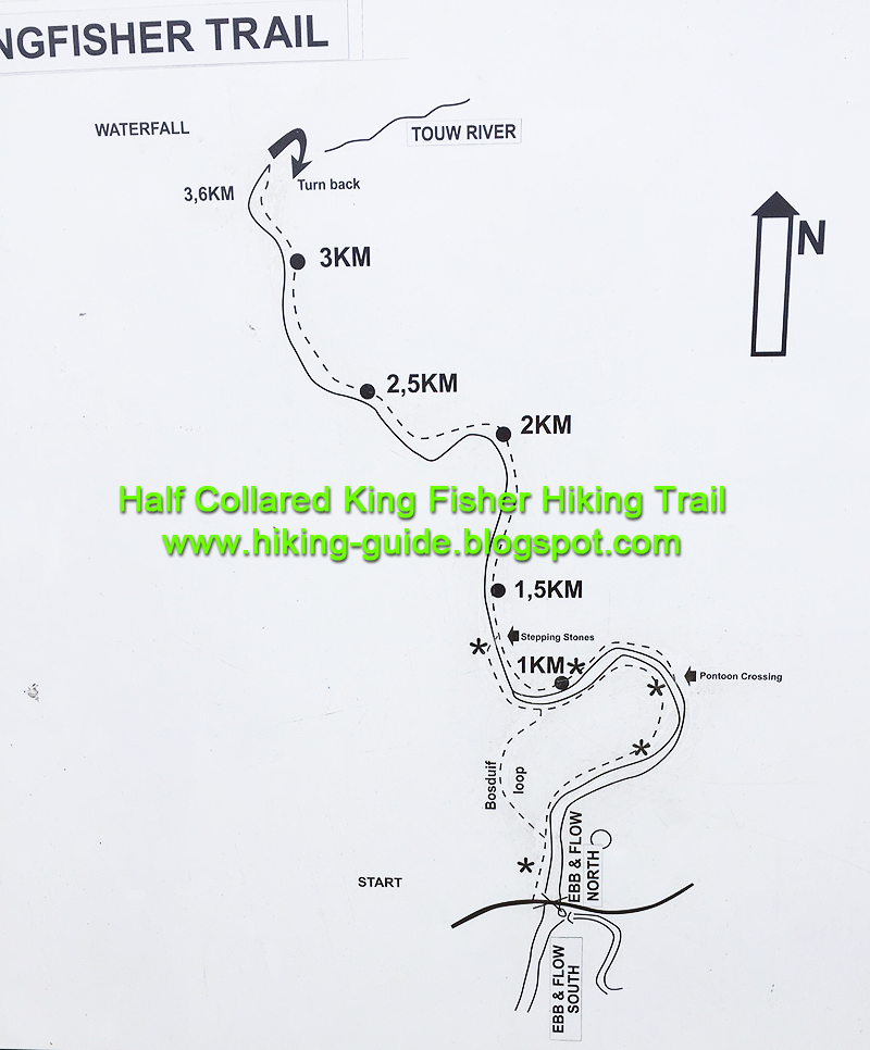 King Fisher Trail in Wilderness