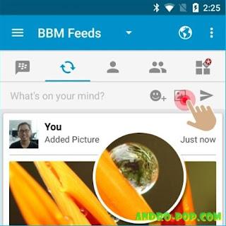 Cara Membuat Posting Foto di Status BBM Terbaru