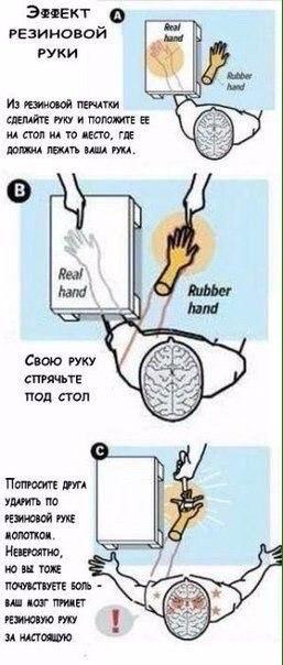 Эффект резиновой руки и виртуальность реальности