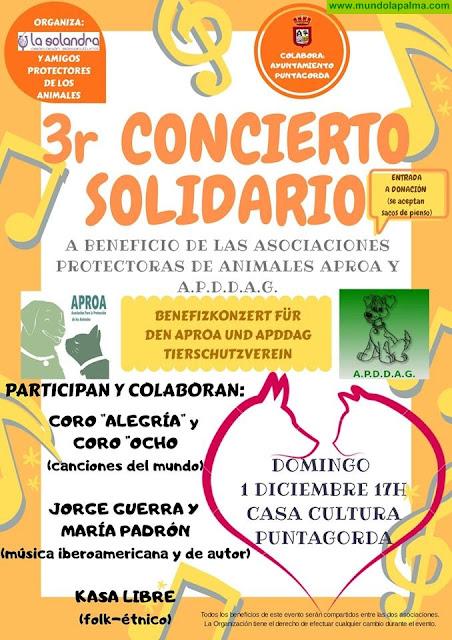 3º Concierto Solidario en Puntagorda