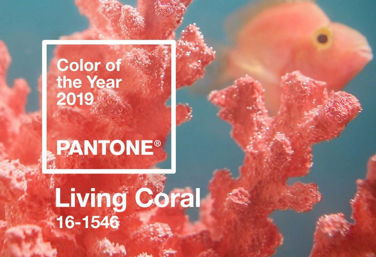living coral - color del 2019 Pantone