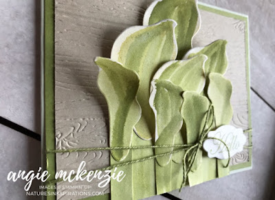 Lasting Lily Hostas   Nature's INKspirations by Angie McKenzie