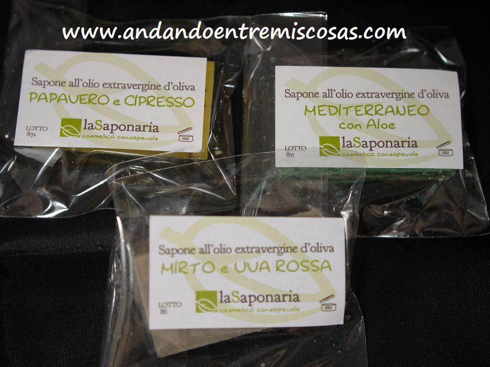 La Saponaria, muestras
