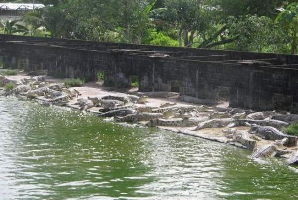 5 Kawasan Wisata Di Samarinda Pilihan Paling Menarik Top Lintas