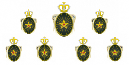 تفاصيل ولوج ضباط الصف مراحل القبول والتكوين ، الأجور والتعويضات