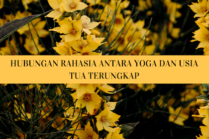 Hubungan Rahasia Antara Yoga dan Usia Tua Terungkap