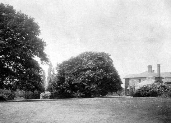 Photograph of the woodland and lawns at Leggatts taken from the 1911 auction brochure