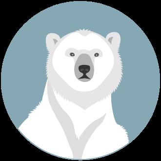Белый медведь - маленькая картинка