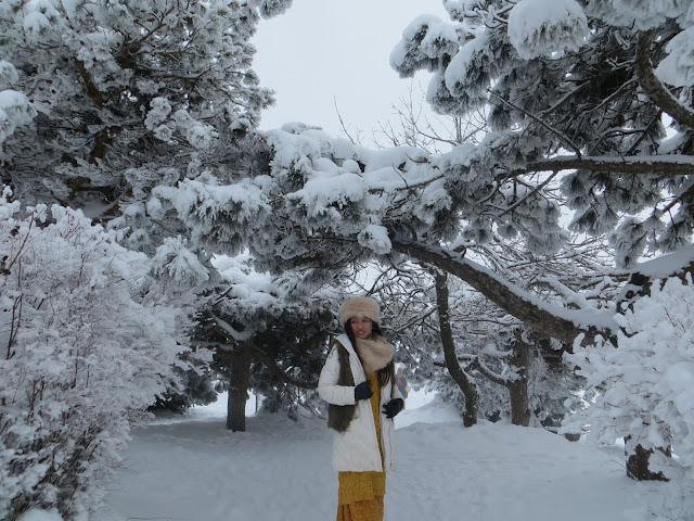 Pyatigorsk winter, Russia