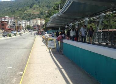 Ejecutivo regional ejecuta plan de embellecimiento en la ciudad de Mérida