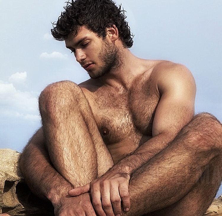 Hairy men gallery pictures free