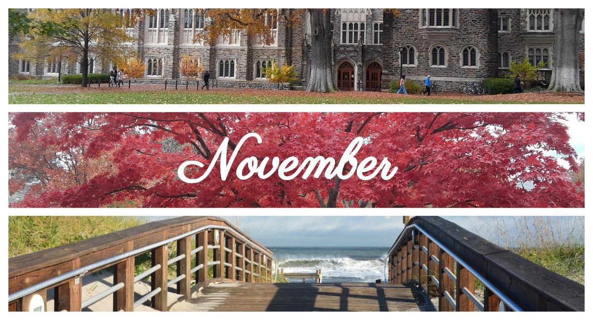 Photo novembre