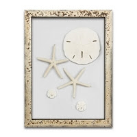 https://www.ceramicwalldecor.com/p/starfish-and-sand-dollars-frame-wall.html