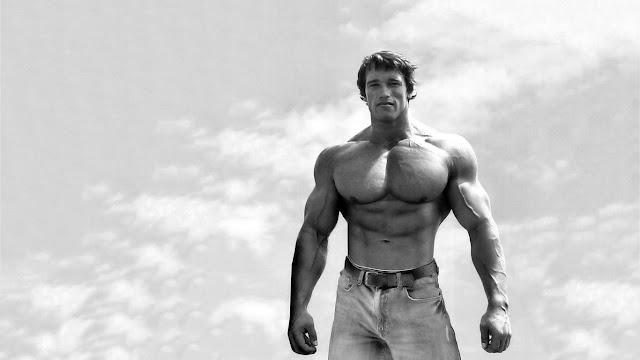 Arnold Schwarzenegger Bodybuilding Tips