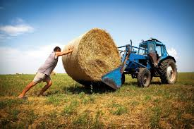 Фермеры стали единоналожниками 4-й группы