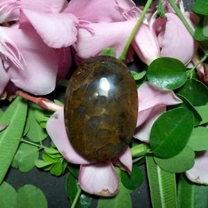 Batu Mustika Lumut Birahi