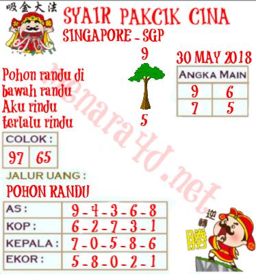 13129 CODE SYAIR SINGAPURA