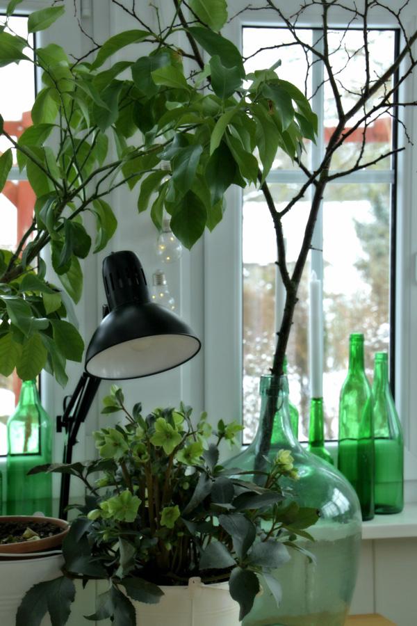 die gartenbotschafterin. Black Bedroom Furniture Sets. Home Design Ideas