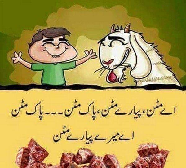 Eid ul Adha Funny Photos And Cartoons ~ Sajna Fun 4 You