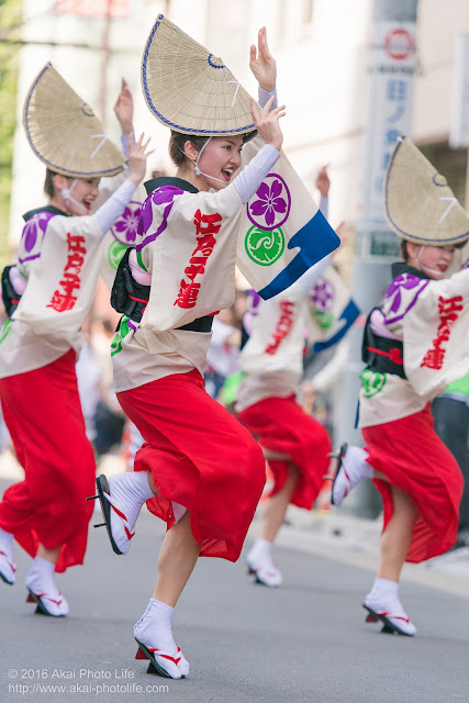 江戸っ子連の女踊り、マロニエ祭りヒューリック浅草橋ビル前、流し踊りの写真 その2