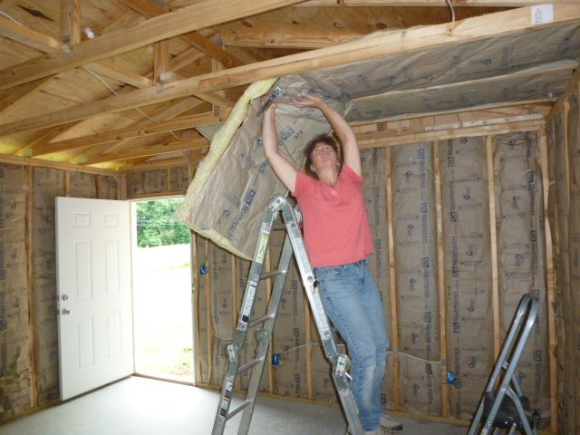 Mike And Lisa S World Chapter 160 Insulation My