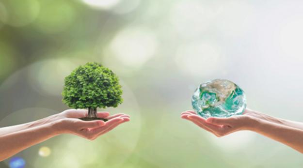 ¿Por qué no interesa la política ambiental?
