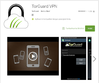 VPn torguard di android