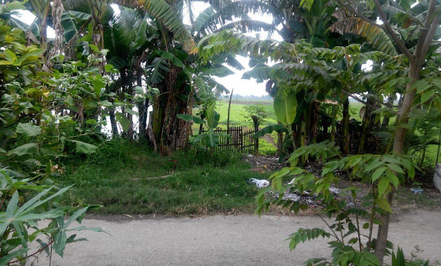 Desa babebalan