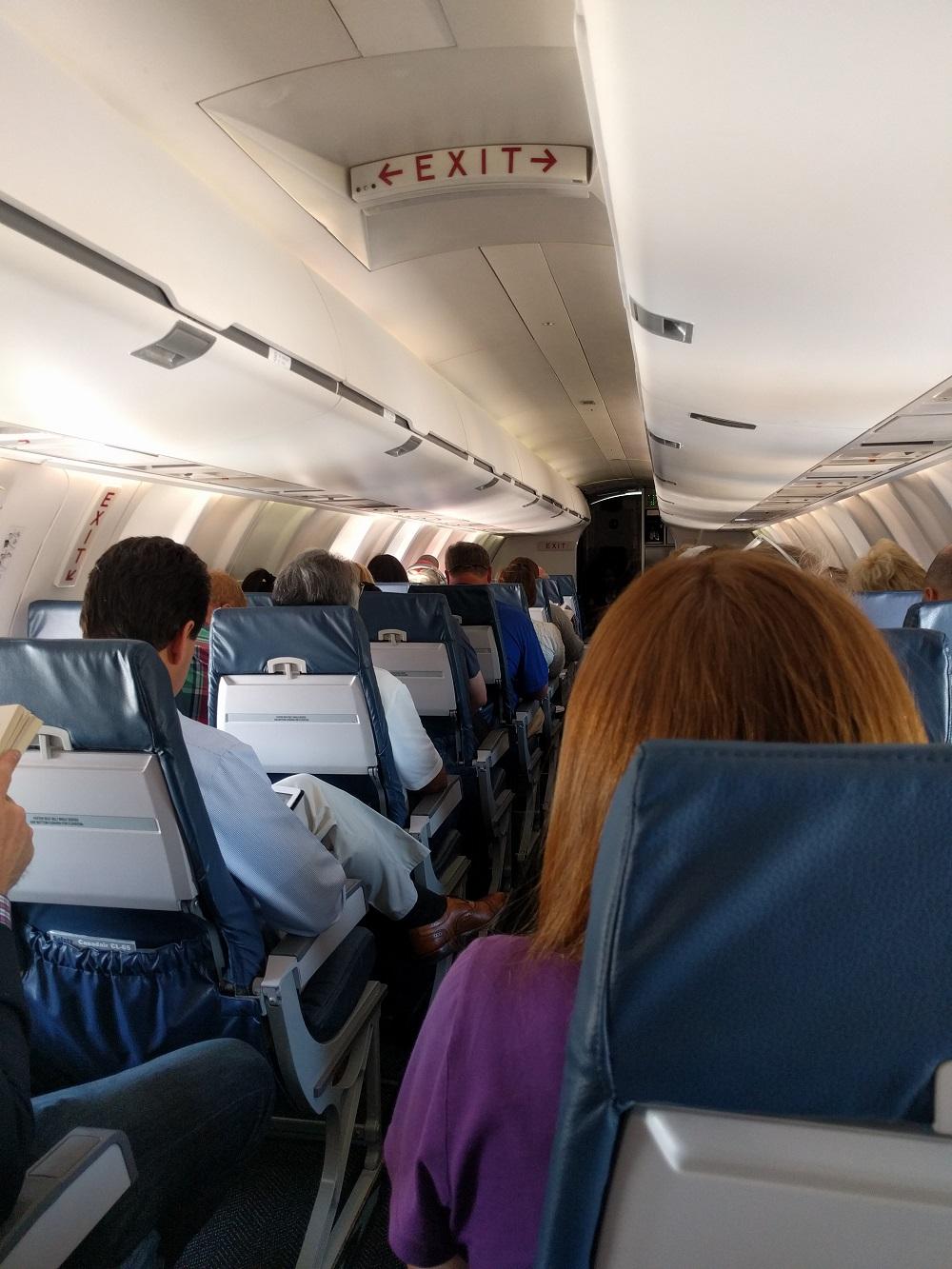 neko random photos our first plane trip together