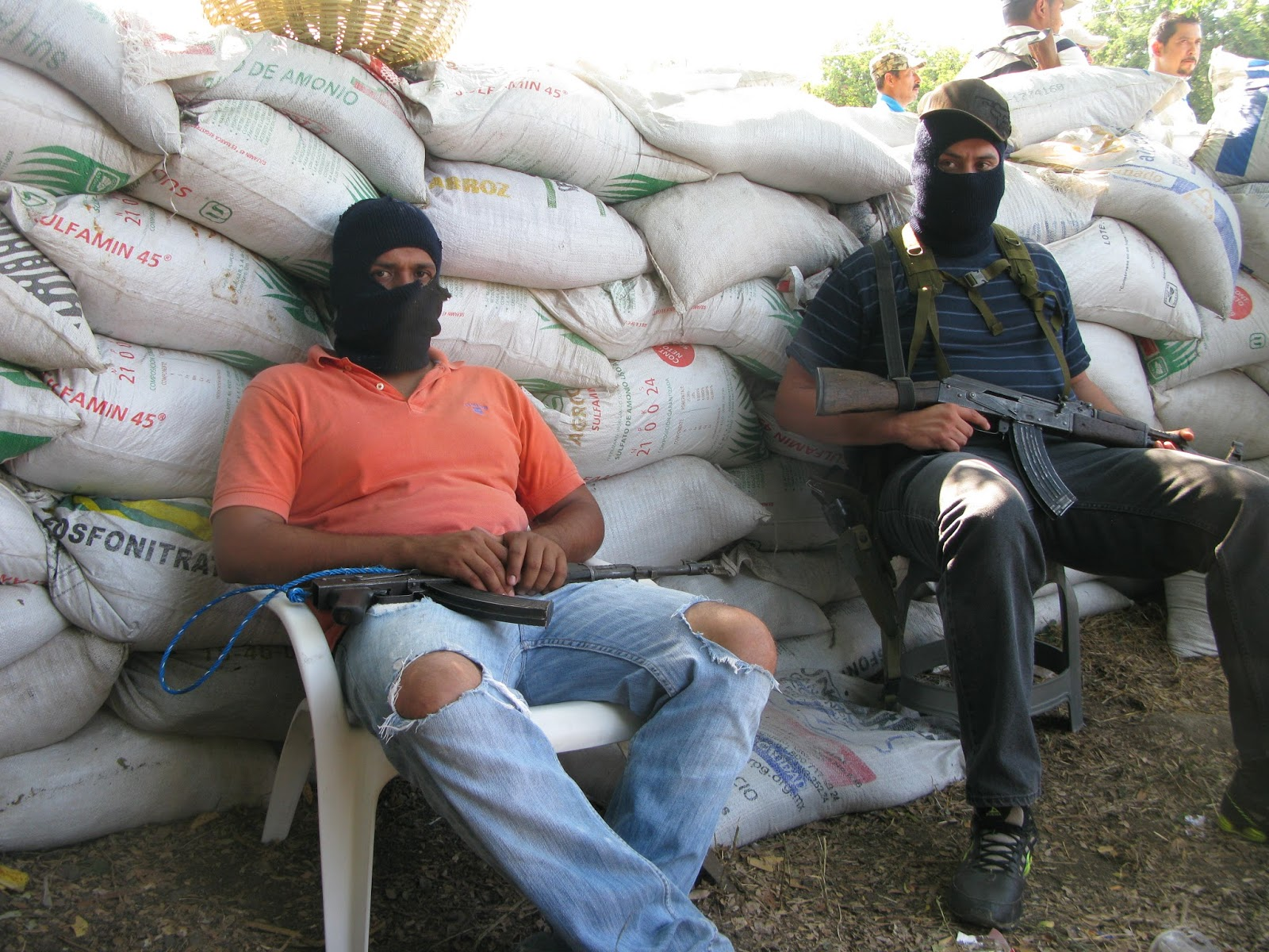 essays on the mexican drug war
