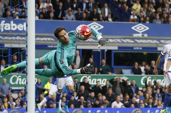 asmir begovic bournemouth