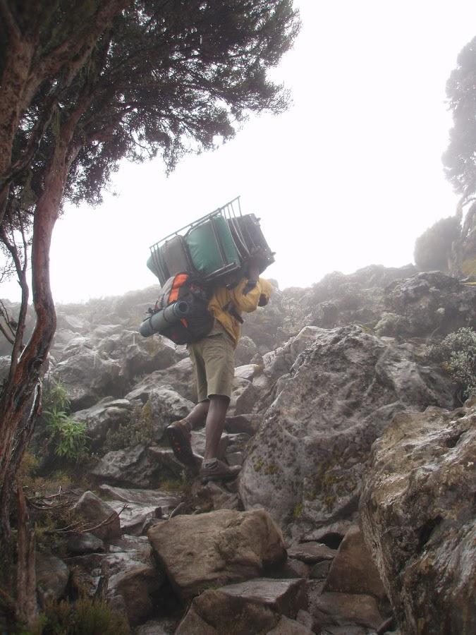 ENLACIMA-Porteador-camino-a-Shira-Hut-Ruta-Machame