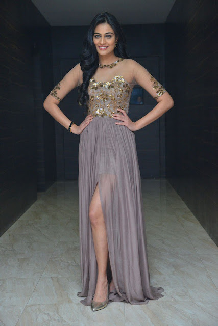Actress Neha Hinge at Srivalli Audio Launch : Photos
