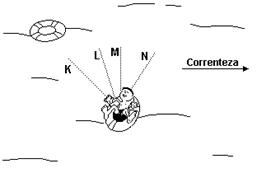 Lista de exercício sobre o Princípio da Independência dos Movimentos de Galileu