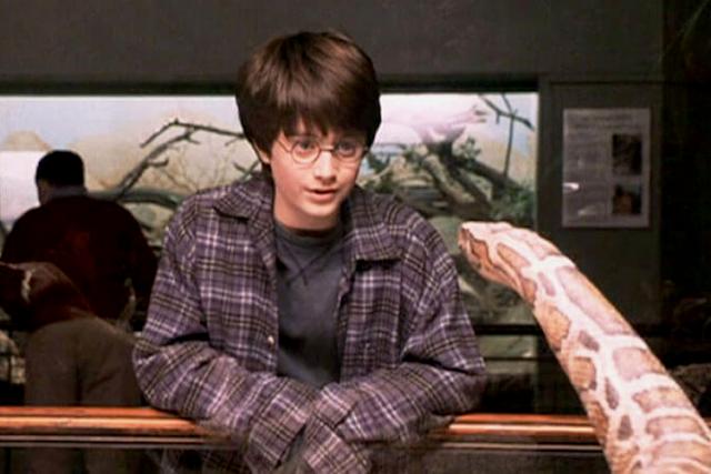 Хари Потър говори на змийски език с бразилската боа удушвач в Хари Потър и философският камък