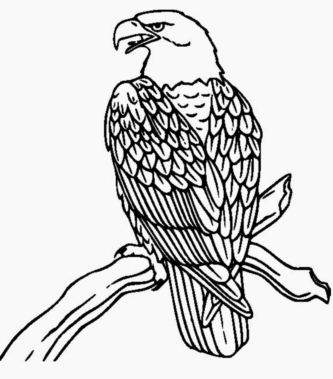 Eagle over a branch tattoo stencil