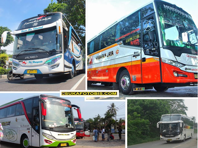 Bus Ter Unik Di Indonesia
