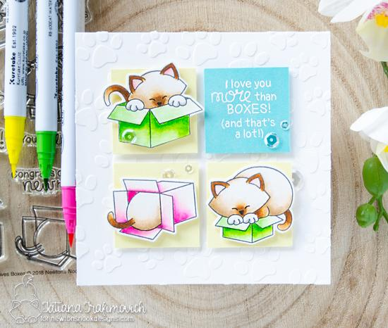 Cat and Boxes Card by Tatiana Trafimovich |  Newton Loves Boxes Stamp Set by Newton's Nook Designs #newtonsnook #handmade