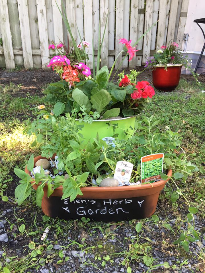 Ask Away Make Your Own Herb Or Flower Garden Planter Event