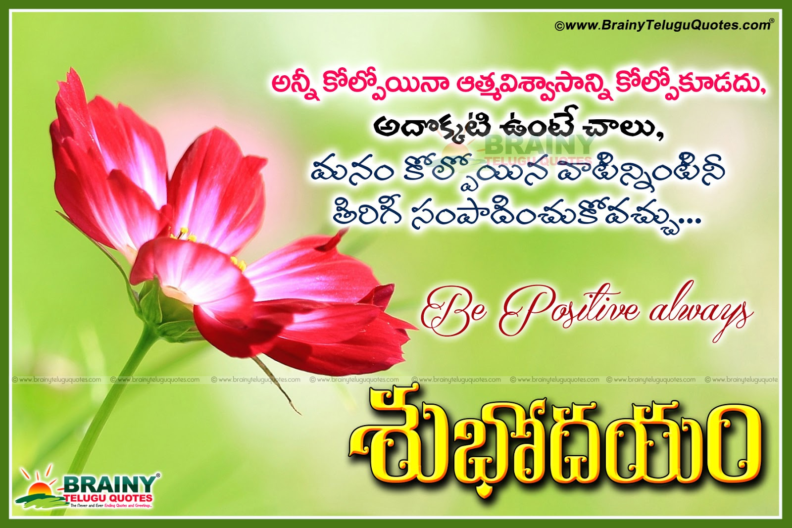 Good Morning Love Telugu : Best of telugu good morning greetings wishes messages