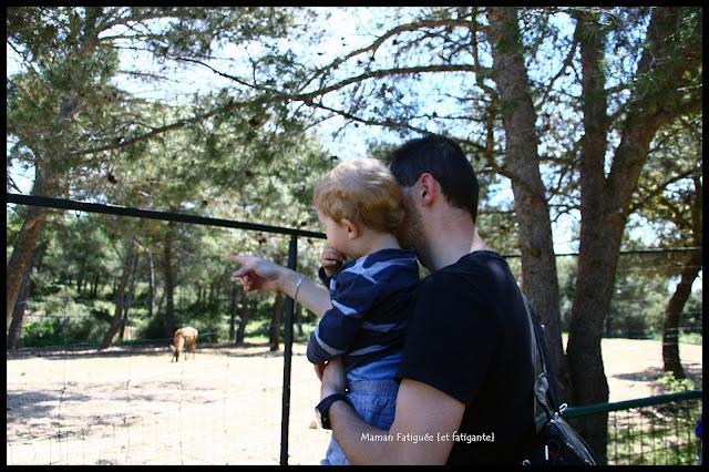 premier zoo Petit Lou