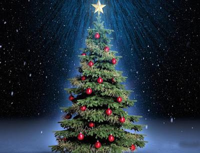 merry christmas greetings