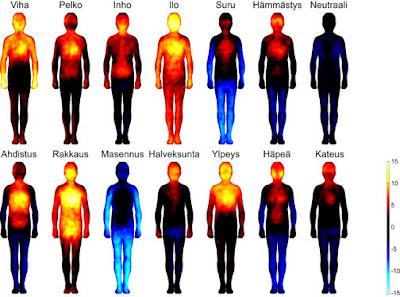 Lämpökameralla otettuja kuvia kehoista eri tunteiden vaikutuksen alaisena.