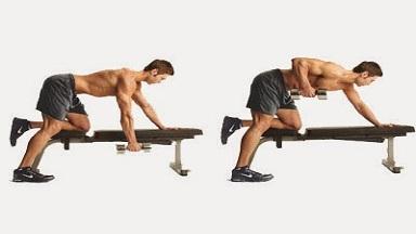 Con ejercicios mancuernas dorsales