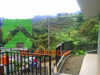Villa dengan pemandangan perkebunan teh