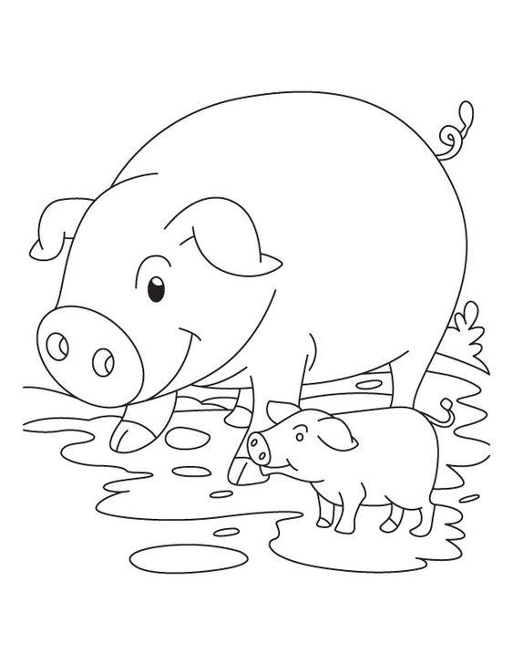 Tranh tô màu hai mẹ con lợn