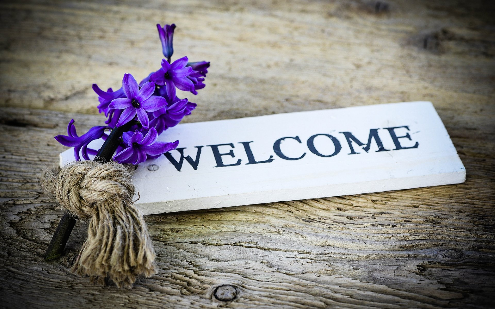 Welcome  HD Wallpapers · 4K