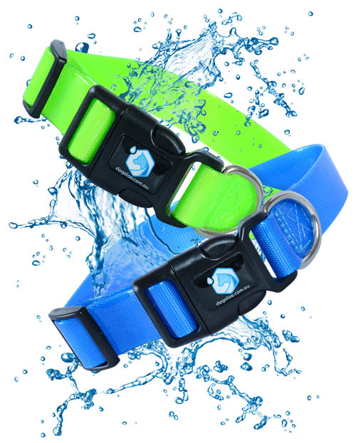 waterproof-dog-collar