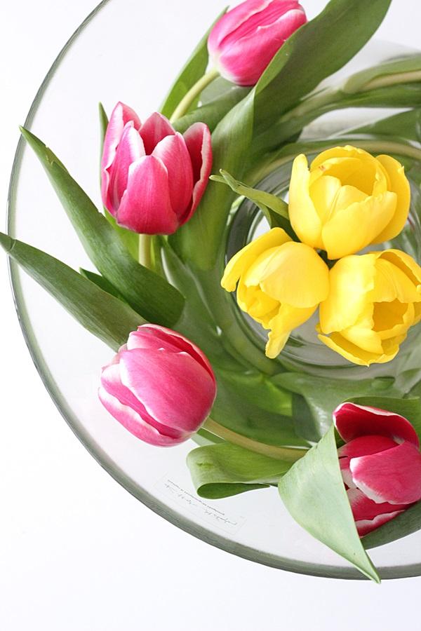 tulppaanit pyörre kukkapyörre pinkki keltainen kukka kukat
